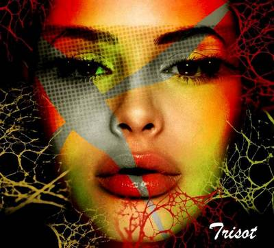blog_Trisot7
